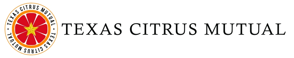 TCM Option 1 Full Logo